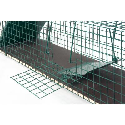 stabile 116x26x28cm [pulverbeschichtet] große Marderfalle Katzenfalle